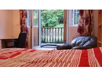 Lovely flat for short term with ensuite room