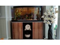 FLUVAL VICENZA 260 LTR FISH TANK WITH CABINET AND FLUVAL 305 EXTERNAL FILTER