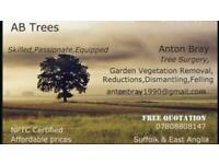 AB Trees,Tree surgeon garden maintenance vegetation clearing