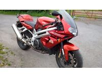 APRILIA FALCO SL1000 V-TWIN VERY GOOD RUNNING BIKE