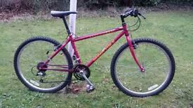 Muddy fox retro bike 21 speed