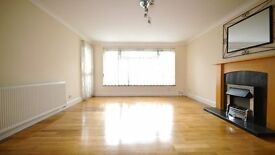2 Double bedroom Ground floor flat
