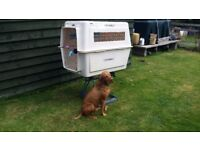 Extra Large Dog Crate, Aircraft Approved, Very Strong, Home or Car Use Too!