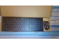 Full-Size Ergonomic Wireless Keyboard and Mouse