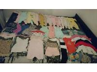 Next baby girls 3-6 months bundle