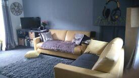 Yellow Leather sofa's