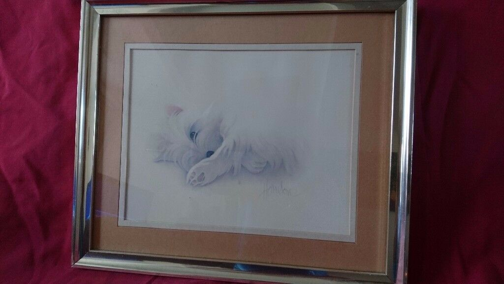 Small Dog Picture Signed.