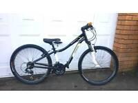 Specialized Hotrock 24 childrens bike