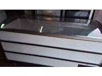 Commercial Chest Freezer in good condition