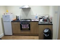 Very Nice 1 bed flat available May