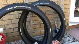 Wetscream and Minion tyres