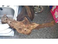 Two large and heavy pieces of bogwood