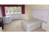 A large double bedsit available in this 4 bed house; within easy access to the North Circular.