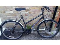 18 1/2 inch woman's mountain bike