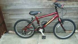 Kids 20' wheel mountain bike