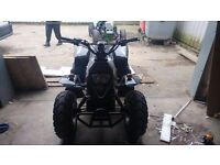 QUADZILLA PRO SHARK 100CC ROAD LEGAL QUAD