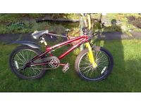 BMX bicycle from Evans Bicycles in Braehead