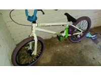Custom built bmx with £160 alienation purple rims