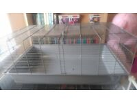 Large hamster/rat cage and accessories