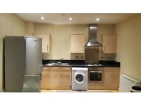 Modern spacious 2 double bedroom apartment, Flat Kelham island furnished as below suit professionals