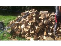 Season hard wood for sale