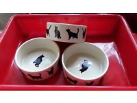 Cat bowls and litter tray