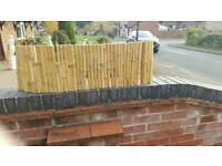 Bamboo Fence Pannels