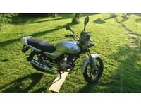 Yamaha YBR125 For Sale new MOT