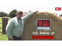 Hay Large Bales only £15