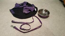 Purple dog collar, lead, bowl and coat