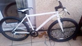 Muddy fox men's bike