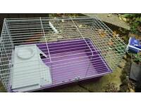 Indoor guinea pig/rabbit cage