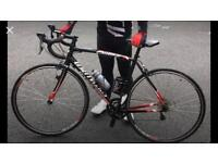 Specialized allez 56cm Great Looking Bike Reduced To £300 NO OFFERS VIEW WEEKENDS ONLY