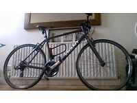 Giant Bike On Road-Sport