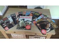 Purnells encyclopedia of animal life magazines