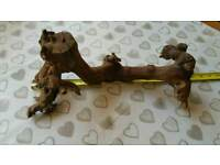 Driftwood reptile branch