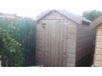 SHED GARDEN SHED 6X4 APEX ROOF 2 YEARS OLD