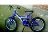Little blue bike