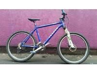 New Voodoo Bokor custom mountain bike