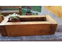 Planters for succulent plants