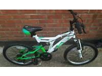 Avigo children's mountain bike