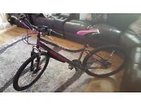 "Brand new ladies 26 "" bicycle"