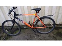RALEIGH FIREFLY MOUNTAIN BICYCLE 15 SPEED 26 INCH WHEEL AVAILABLE FOR SALE