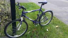 Bike Dunlop Velocity + lock