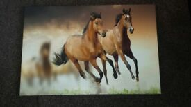 New framed medium canvas pictute horses