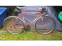 Vintage Road Racers Raleigh and Puch Classics Bicycles 5 gears
