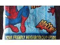 Spiderman reversible single duvet and light shade
