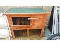 Rabbits & hatch for sale