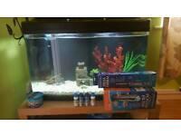 big 120 ltr fish tank