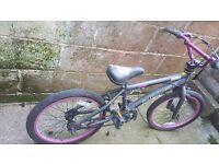 Purple and black bmx bike